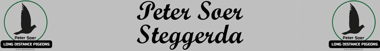 Peter Soer Postduiven